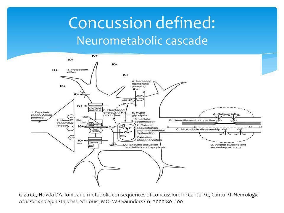 Concussion defined: Neurometabolic cascade Giza CC, Hovda DA. Ionic and metabolic consequences of concussion. In: Cantu RC, Cantu RI. Neurologic Athle