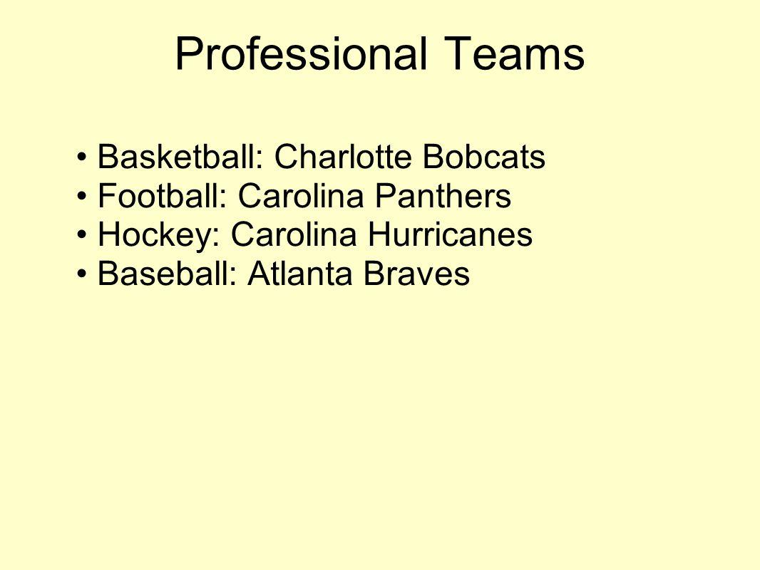 Professional Teams Basketball: Charlotte Bobcats Football: Carolina Panthers Hockey: Carolina Hurricanes Baseball: Atlanta Braves