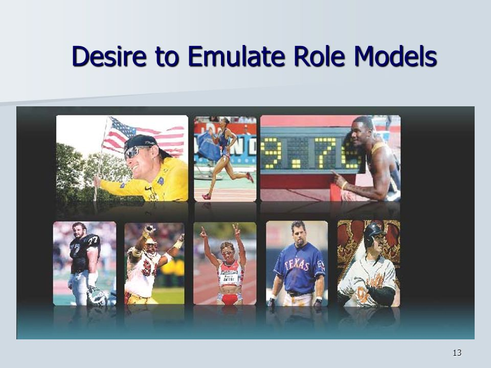 13 Desire to Emulate Role Models