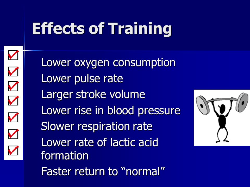 Effects of Training Lower oxygen consumption Lower pulse rate Larger stroke volume Lower rise in blood pressure Slower respiration rate Lower rate of
