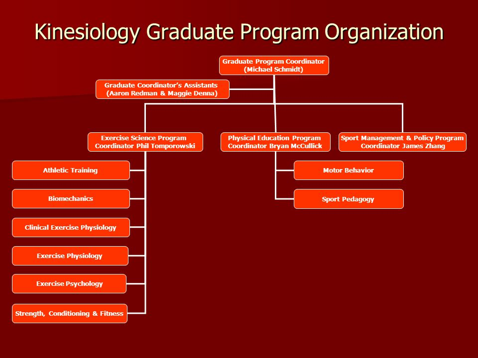 Kinesiology Graduate Program Organization Graduate Program Coordinator (Michael Schmidt) Exercise Science Program Coordinator Phil Tomporowski Physica