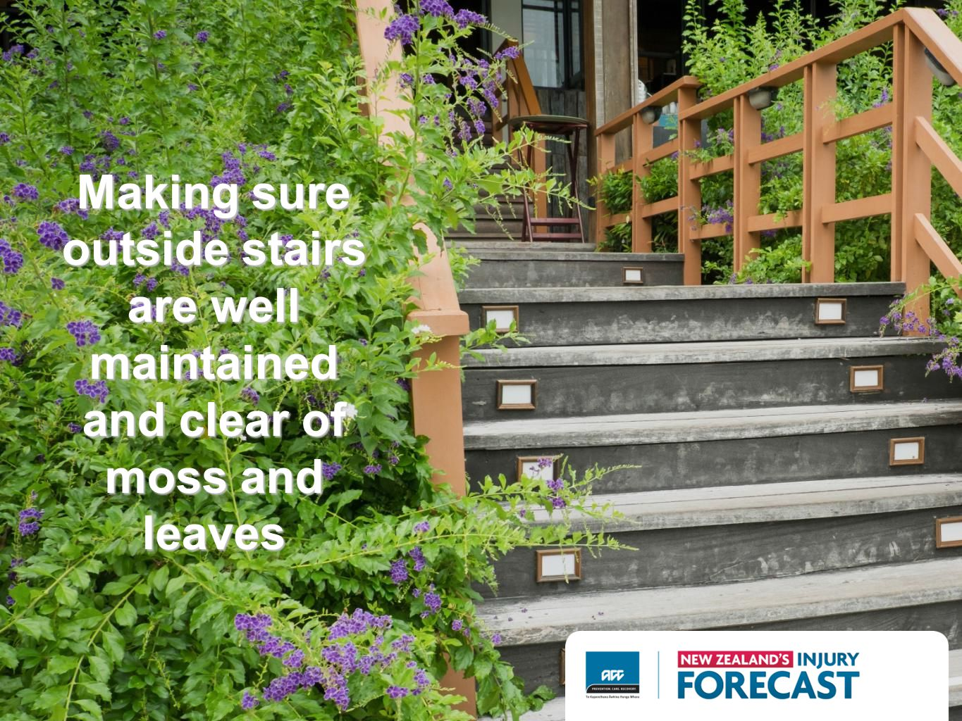 Making sure outside stairs are well maintained and clear of moss and leaves