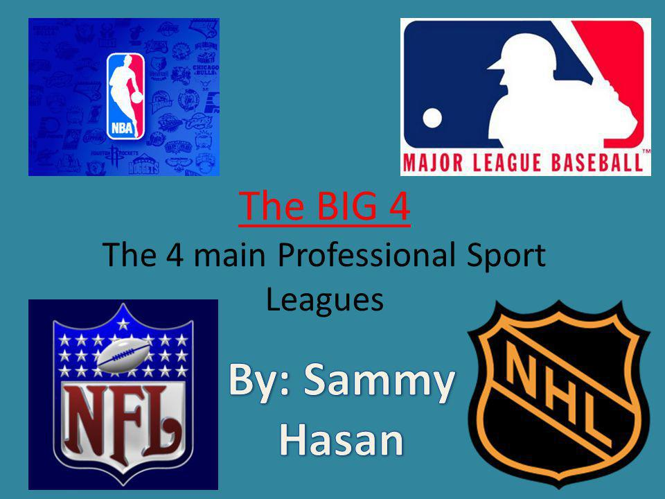 The BIG 4 The 4 main Professional Sport Leagues