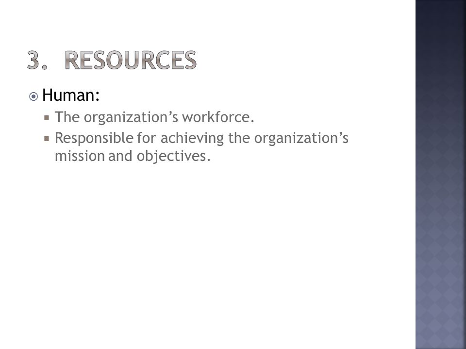 Human: The organizations workforce. Responsible for achieving the organizations mission and objectives.