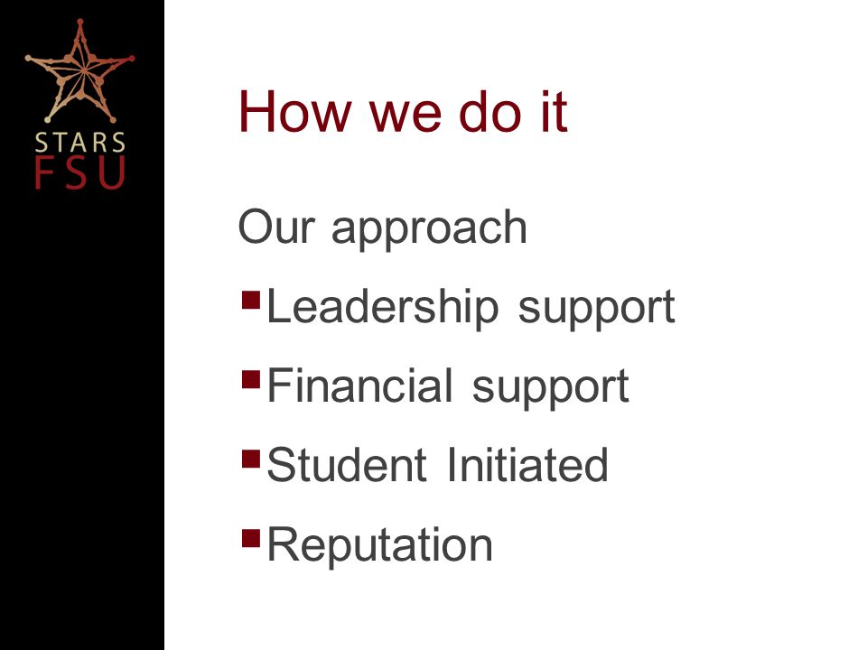 How we do it Our approach Leadership support Financial support Student Initiated Reputation