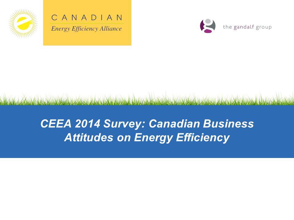 CEEA 2014 Survey: Canadian Business Attitudes on Energy Efficiency