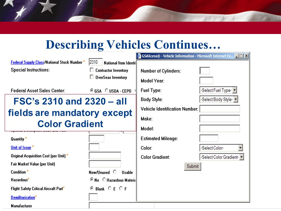 Describing Vehicles Continues… 13 FSCs 2310 and 2320 – all fields are mandatory except Color Gradient