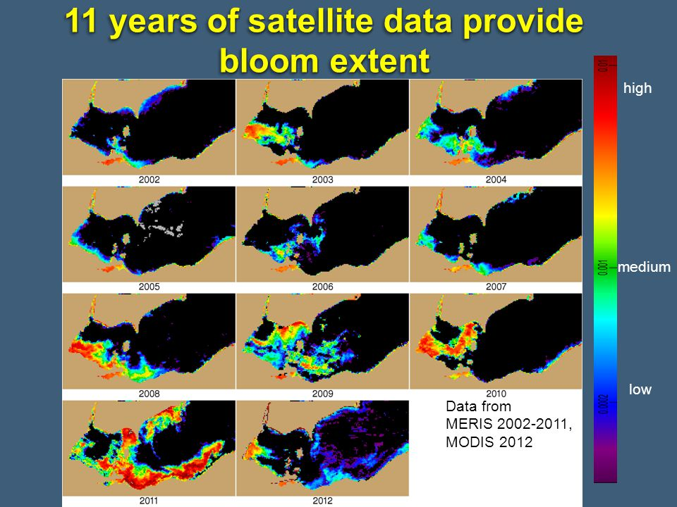 11 years of satellite data provide bloom extent Data from MERIS 2002-2011, MODIS 2012 high medium low