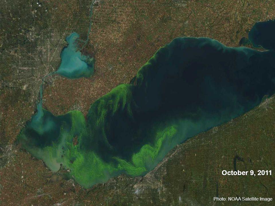 Photo: NOAA Satellite Image October 9, 2011