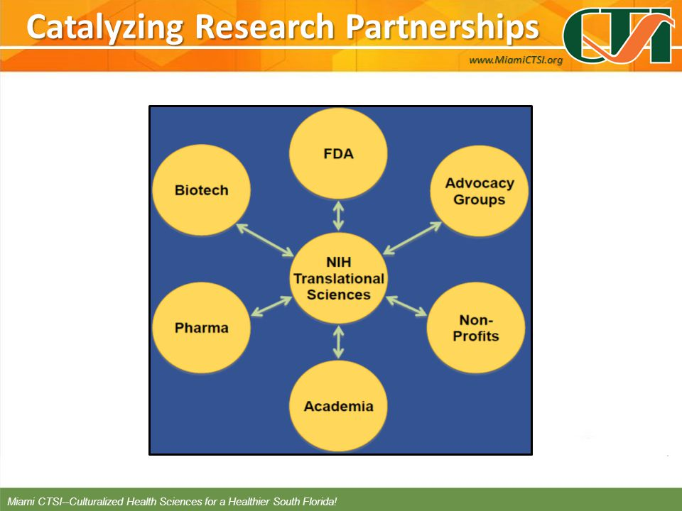 Catalyzing Research Partnerships www.MiamiCTSI.org Miami CTSI--Culturalized Health Sciences for a Healthier South Florida!