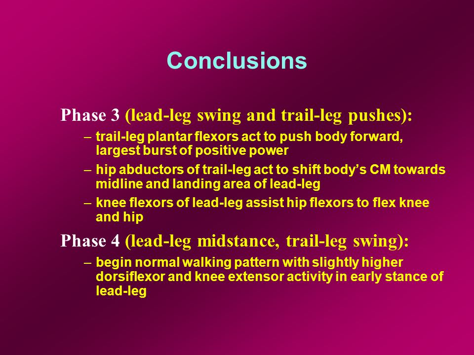 Conclusions Phase 3 (lead-leg swing and trail-leg pushes): –trail-leg plantar flexors act to push body forward, largest burst of positive power –hip abductors of trail-leg act to shift bodys CM towards midline and landing area of lead-leg –knee flexors of lead-leg assist hip flexors to flex knee and hip Phase 4 (lead-leg midstance, trail-leg swing): –begin normal walking pattern with slightly higher dorsiflexor and knee extensor activity in early stance of lead-leg