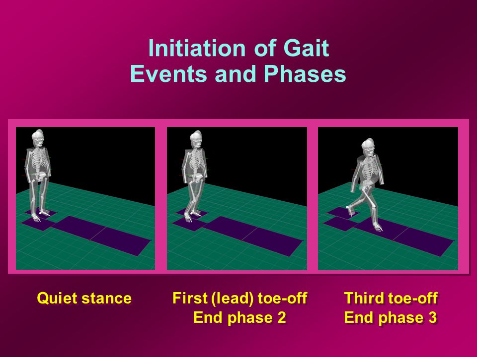 Initiation of Gait Events and Phases Quiet stance First (lead) toe-off End phase 2 First (lead) toe-off End phase 2 Third toe-off End phase 3 Third toe-off End phase 3