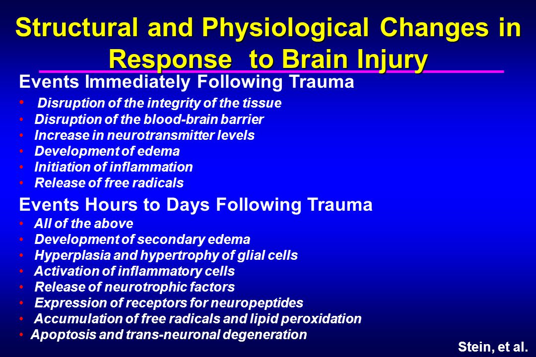 Structural and Physiological Changes in Response to Brain Injury Events Immediately Following Trauma Disruption of the integrity of the tissue Disrupt