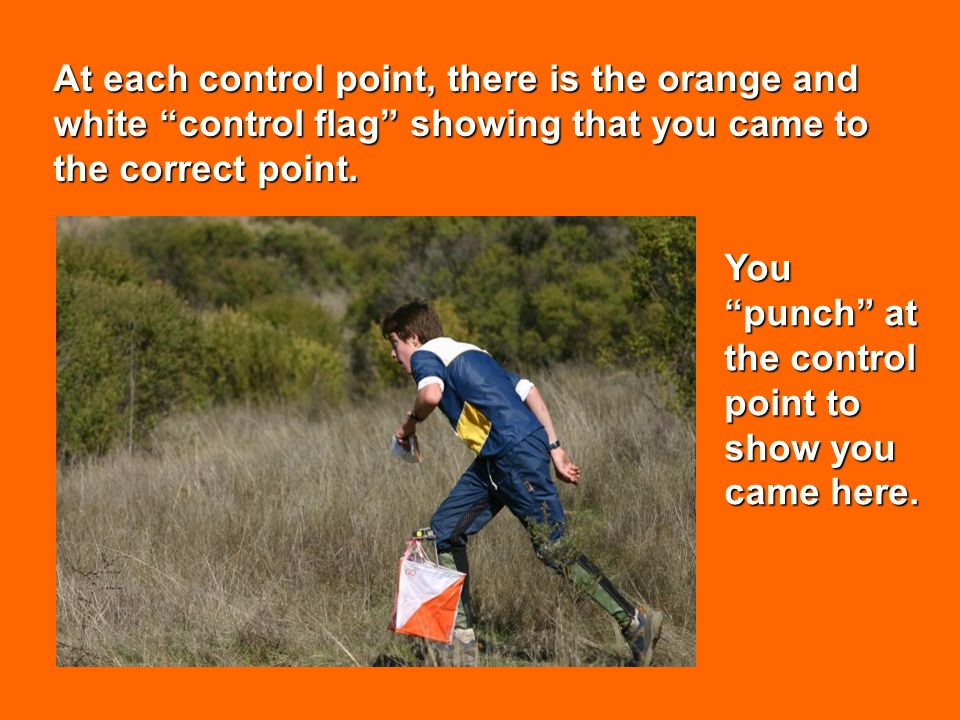 At each control point, there is the orange and white control flag showing that you came to the correct point. You punch at the control point to show y