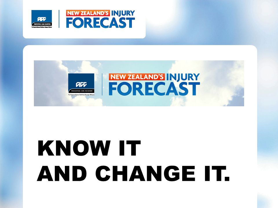 Online personal injury forecast tool
