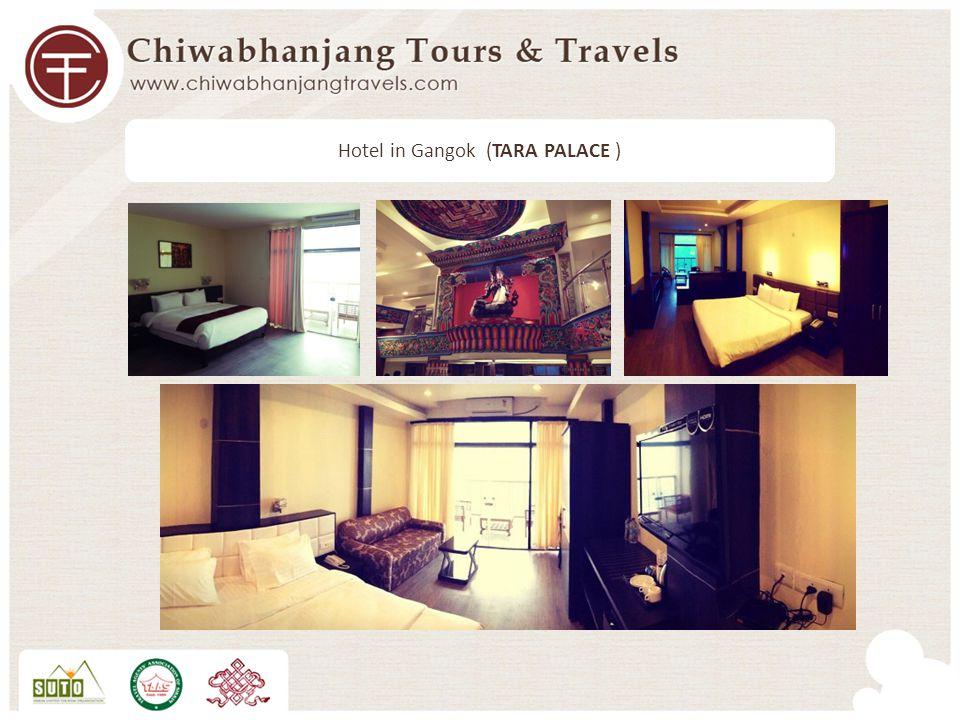 Hotel in Gangok (TARA PALACE )