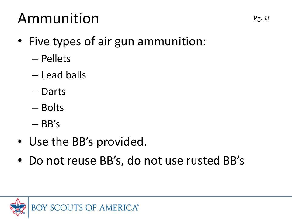 Ammunition Five types of air gun ammunition: – Pellets – Lead balls – Darts – Bolts – BBs Use the BBs provided.
