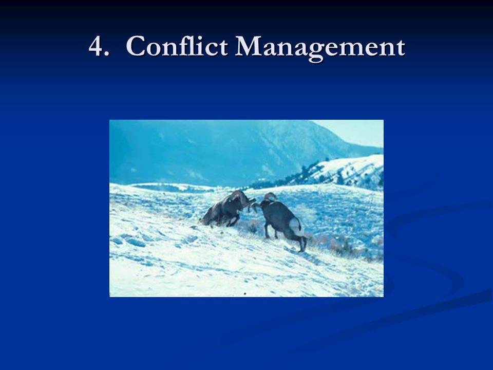 4. Conflict Management