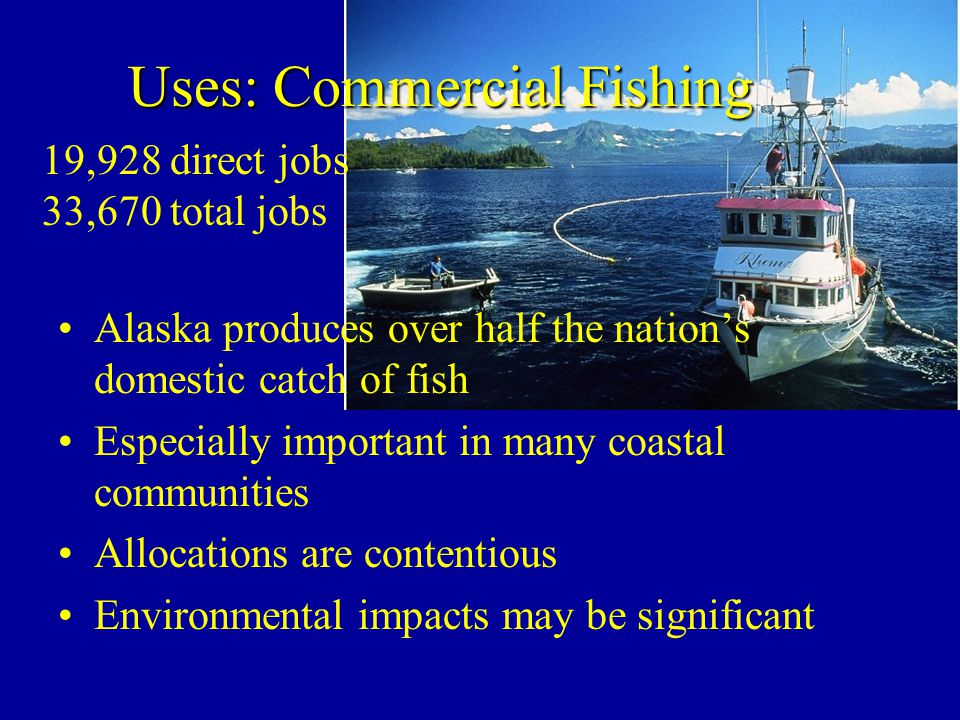 Uses: Commercial Fishing Alaska produces over half the nations domestic catch of fish Especially important in many coastal communities Allocations are contentious Environmental impacts may be significant 19,928 direct jobs 33,670 total jobs