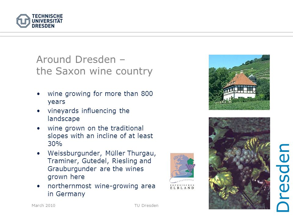 March 2010TU Dresden Around Dresden – the Saxon wine country wine growing for more than 800 years vineyards influencing the landscape wine grown on th