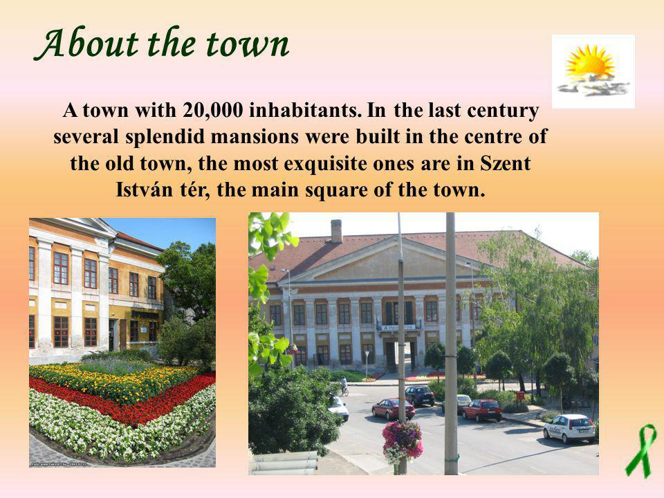 A town with 20,000 inhabitants. In the last century several splendid mansions were built in the centre of the old town, the most exquisite ones are in
