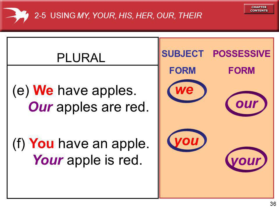 36 (e) We have apples. Our apples are red. (f) You have an apple.