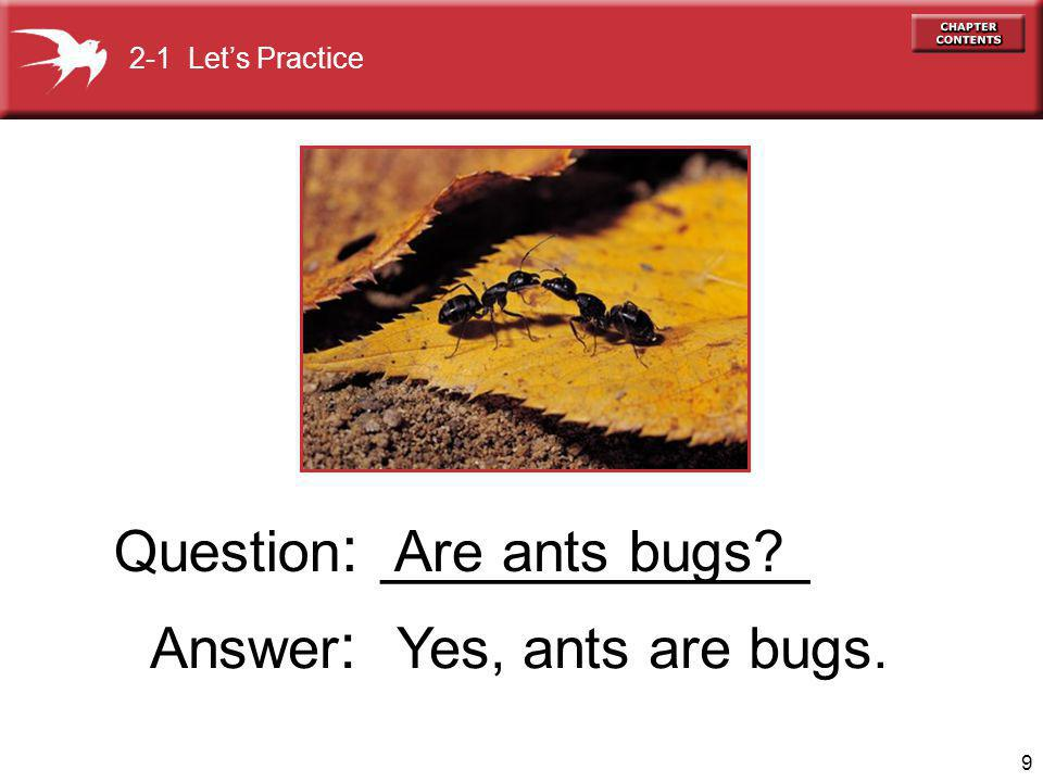 9 Are ants bugs Question : ____________ 2-1 Lets Practice Answer : Yes, ants are bugs.