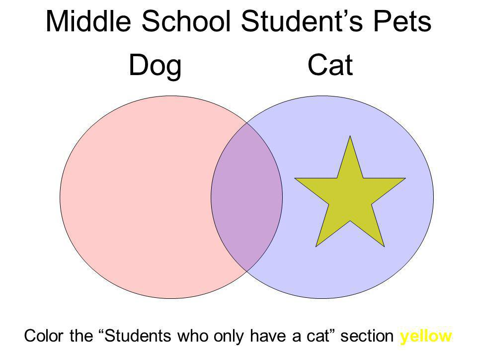 Middle School Students Pets DogCat Color the Students who only have a cat section yellow