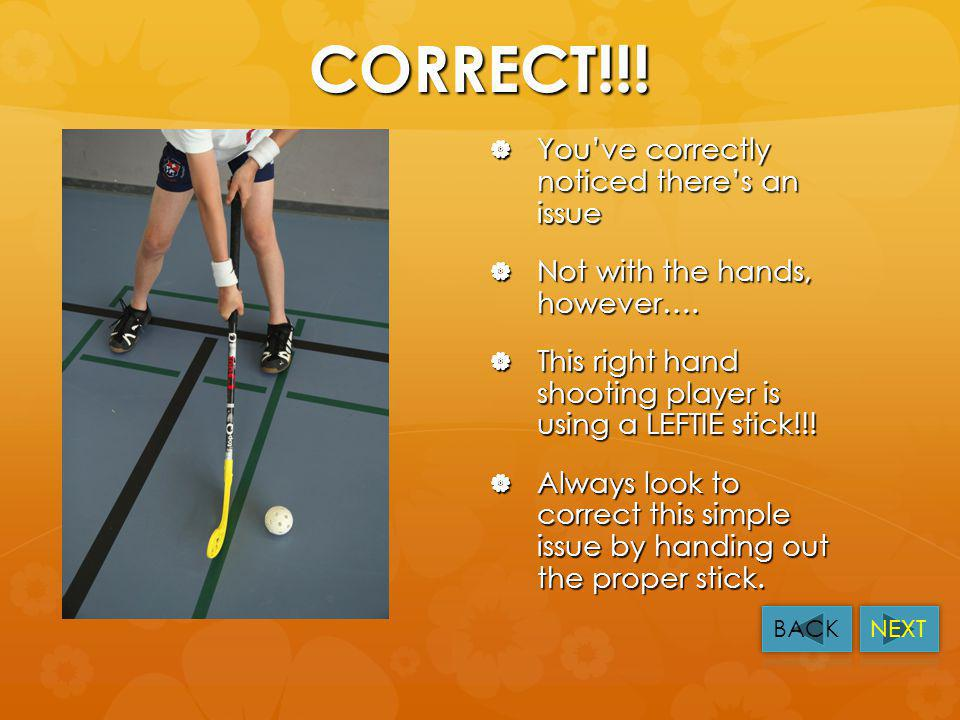 Q4. Stick and Hands Here the same question for this right handed player. Here the same question for this right handed player. The player says it doesn