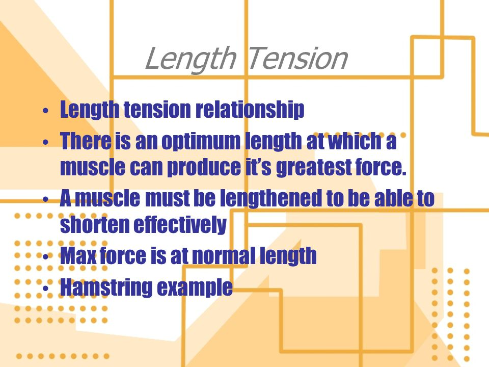 Length Tension Length tension relationship There is an optimum length at which a muscle can produce its greatest force. A muscle must be lengthened to