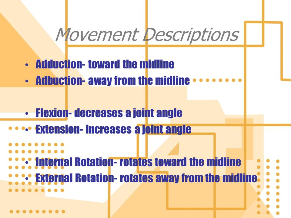 Movement Descriptions Adduction- toward the midline Adbuction- away from the midline Flexion- decreases a joint angle Extension- increases a joint ang