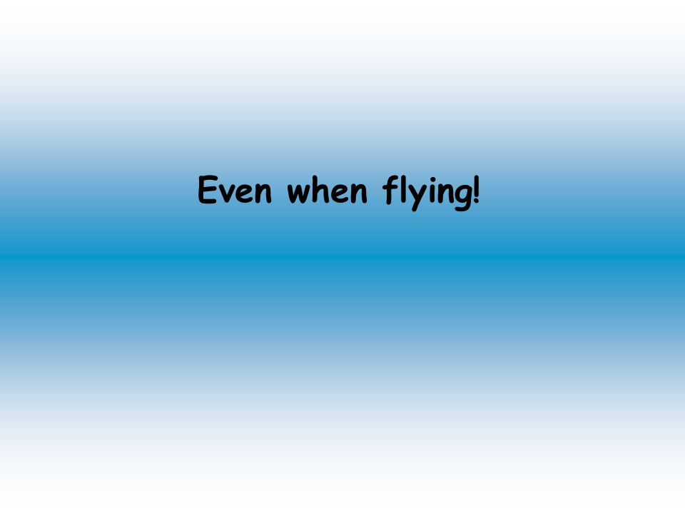 Even when flying!