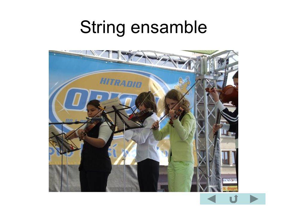 String ensamble