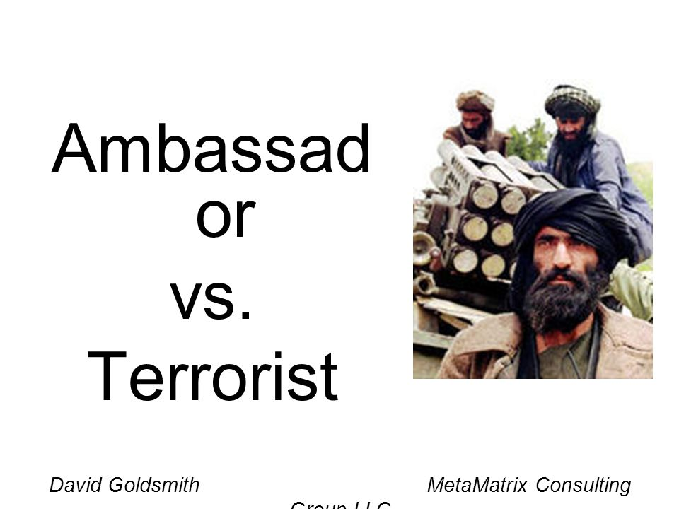 David Goldsmith MetaMatrix Consulting Group LLC Ambassad or vs. Terrorist