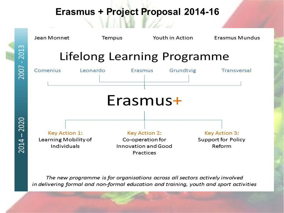 Erasmus + Project Proposal 2014-16