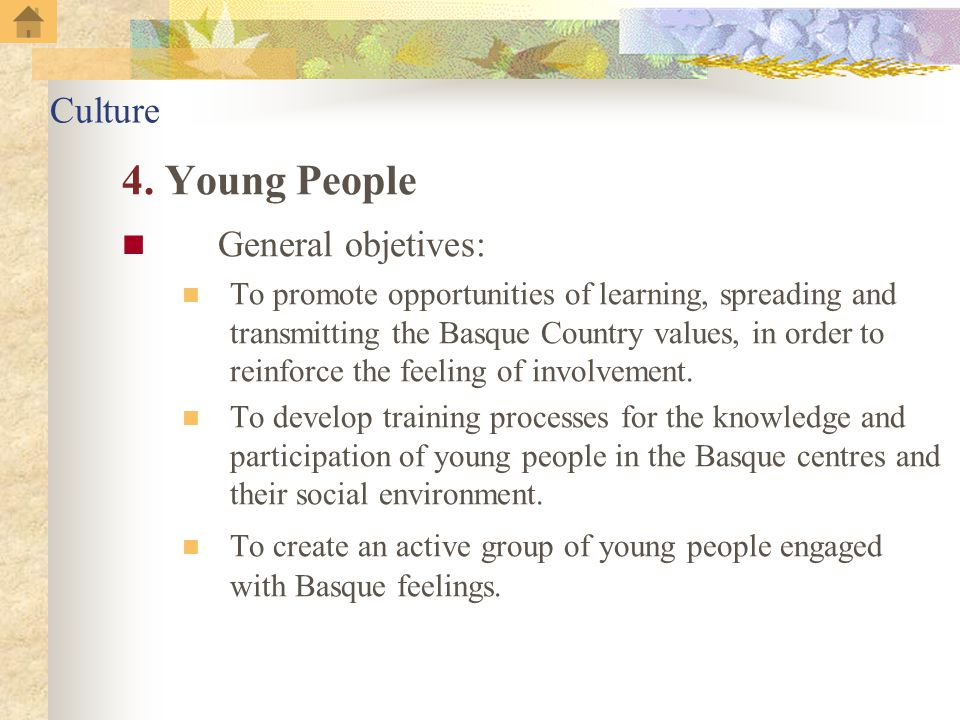 4. Young People General objetives: To promote opportunities of learning, spreading and transmitting the Basque Country values, in order to reinforce t