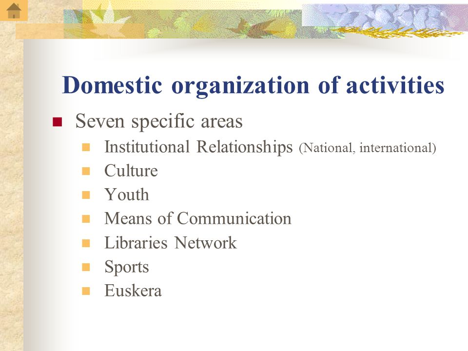 Domestic organization of activities Seven specific areas Institutional Relationships ( National, international ) Culture Youth Means of Communication Libraries Network Sports Euskera