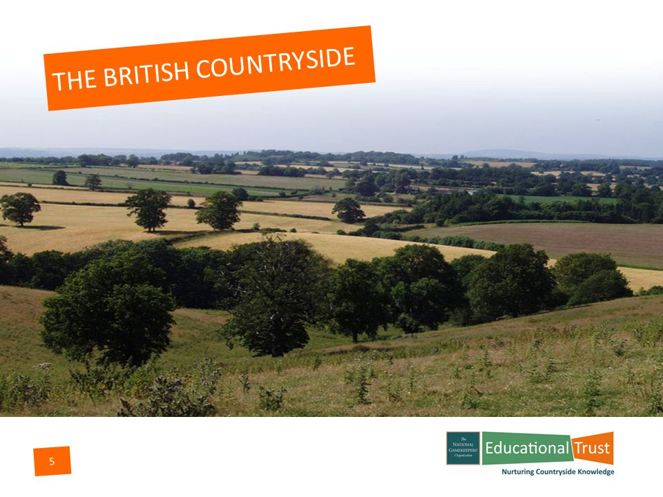 5 THE BRITISH COUNTRYSIDE