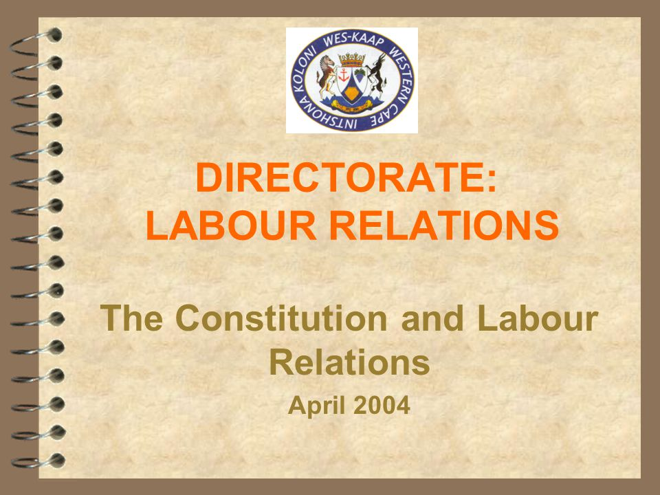 DIRECTORATE: LABOUR RELATIONS The Constitution and Labour Relations April 2004