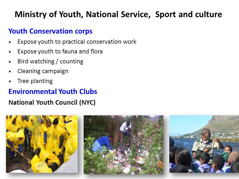Ministry of Youth, National Service, Sport and culture Youth Conservation corps Expose youth to practical conservation work Expose youth to fauna and flora Bird watching / counting Cleaning campaign Tree planting Environmental Youth Clubs National Youth Council (NYC)