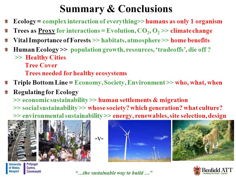 Summary & Conclusions Ecology = complex interaction of everything>> humans as only 1 organism Trees as Proxy for interactions = Evolution, CO 2, O 2 >> climate change Vital Importance of Forests >> habitats, atmosphere >> home benefits Human Ecology >> population growth, resources, tradeoffs, die off .