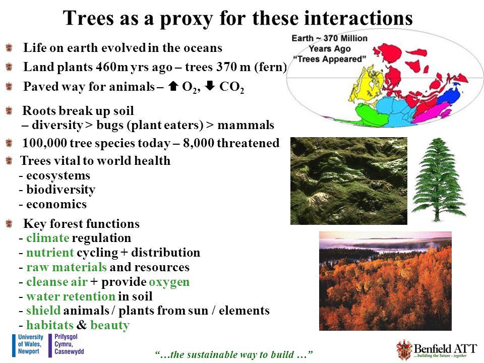 Forests … 50-90% of terrestrial species.