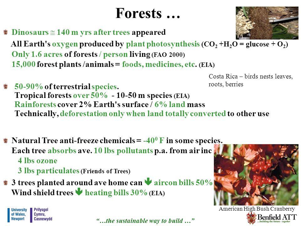 Forests … 50-90% of terrestrial species.