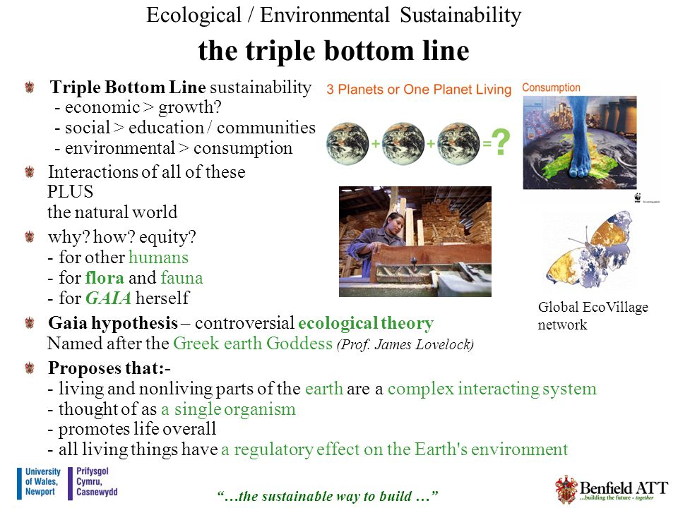 Ecological / Environmental Sustainability the triple bottom line Triple Bottom Line sustainability - economic > growth.