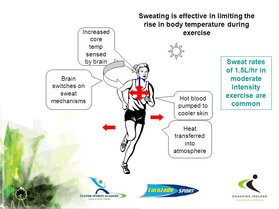 Sweating Heat generated in exercise is transferred from the body core to the skin, where it vaporises the liquid sweat Evaporation of sweat usually ac