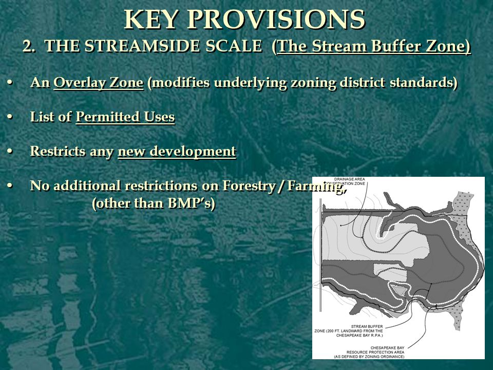 PERMITTED USES: The Stream Buffer Zone PERMITTED USES: The Stream Buffer Zone Non-commercial catwalks, piers, fences, and duck blinds Cultivation and harvesting of shellfish and worms for bait.