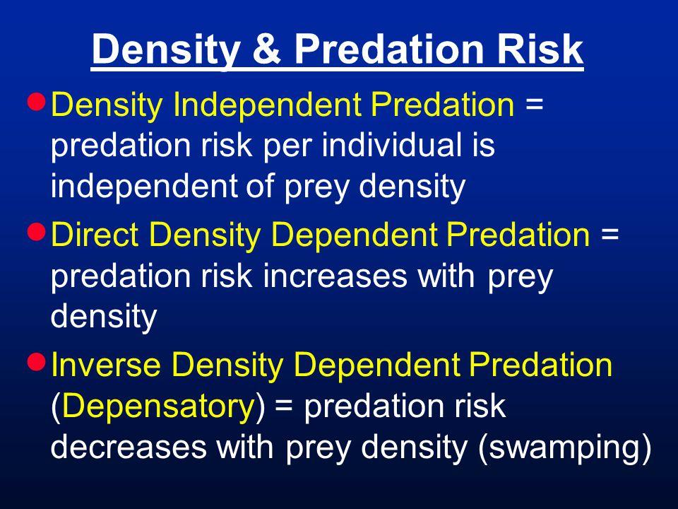 Density & Predation Risk Density Independent Predation = predation risk per individual is independent of prey density Direct Density Dependent Predation = predation risk increases with prey density Inverse Density Dependent Predation (Depensatory) = predation risk decreases with prey density (swamping)