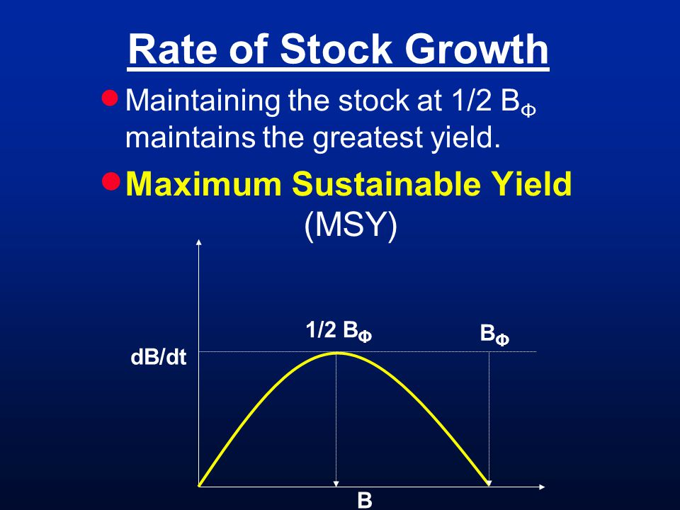 Rate of Stock Growth Maintaining the stock at 1/2 B Φ maintains the greatest yield.