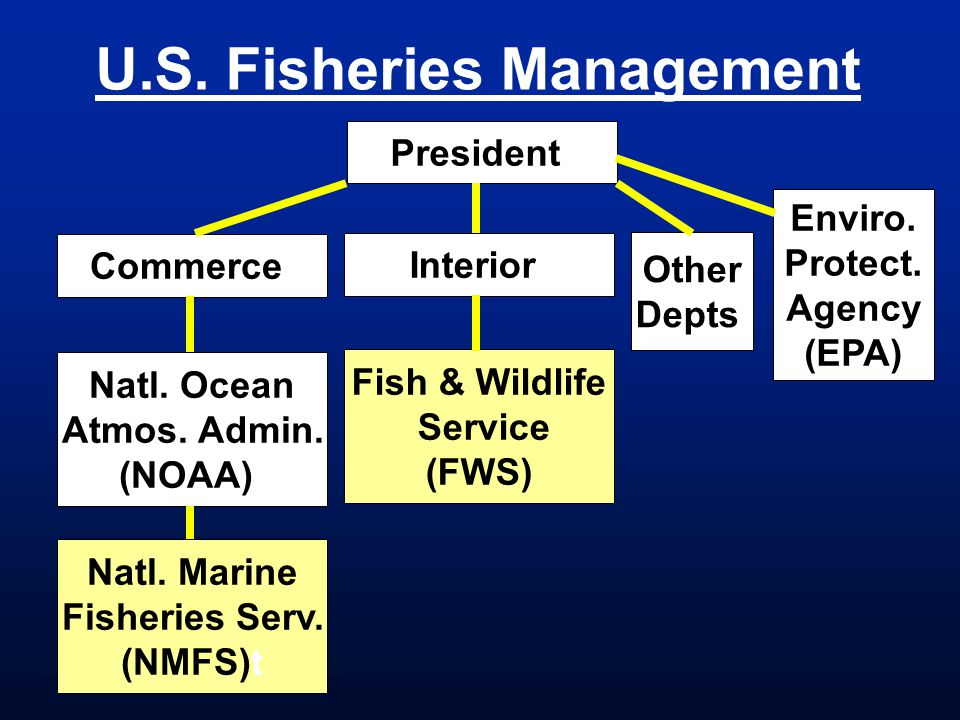 U.S. Fisheries Management Presidentt Commercet Other Depts. Interiort Fish & Wildlife Service (FWS) Natl. Ocean Atmos. Admin. (NOAA)t Natl. Marine Fis