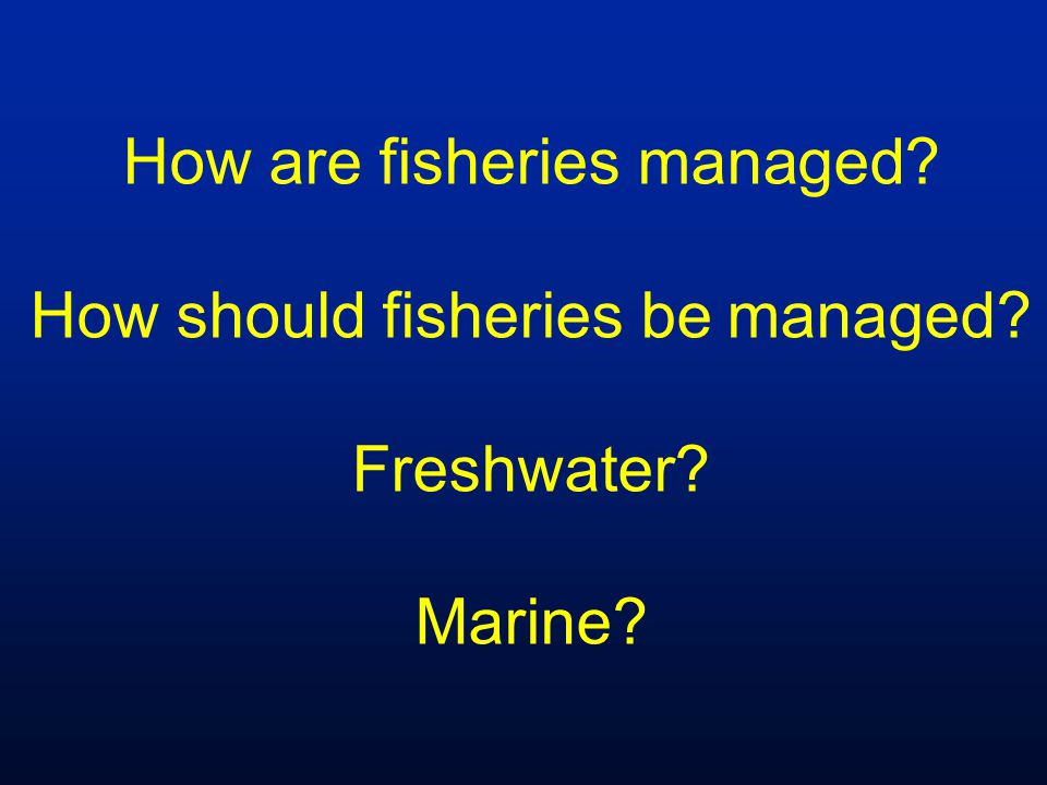 How are fisheries managed? How should fisheries be managed? Freshwater? Marine?